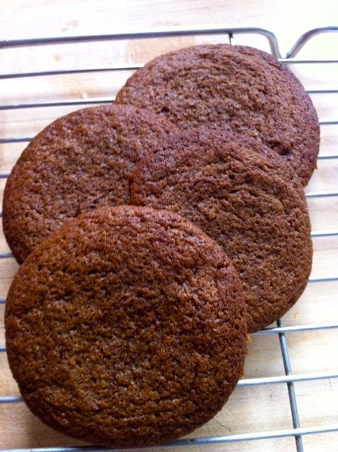 Ginger Biscuits Thermomix Style Howard S Science And Cooking
